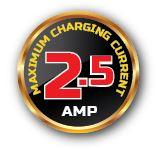 2.5amp badge
